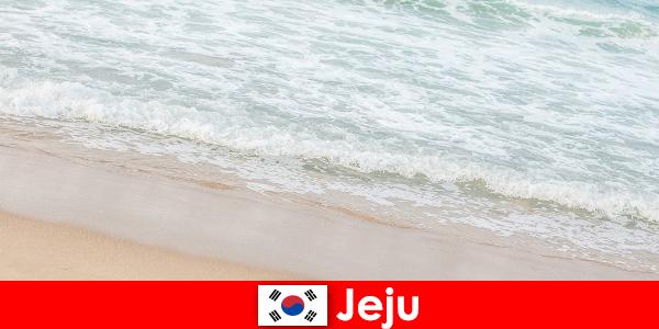 Jeju với cát mịn và nước trong v hút là nơi lý tưởng cho các kỳ nghỉ gia đình trên bãi biển