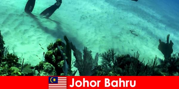 Hoạt động phiêu lưu ở Johor Bahru Lặn, leo núi, đi bộ đường dài và nhiều hơn nữa