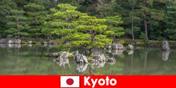Vườn Nhật Mời người lạ đi dạo thư giãn ở Kyoto