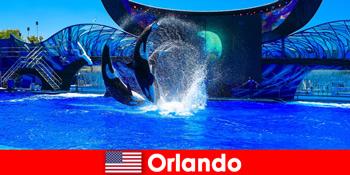 Đặt du lịch cá nhân cho người nước ngoài tại Orlando Hoa Kỳ