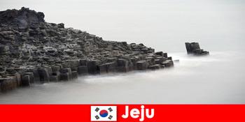 Người nước ngoài khám phá các chuyến du ngoạn nổi tiếng ở Jeju Hàn Quốc