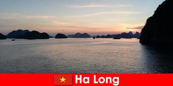 Kỳ nghỉ hoàn hảo tại Hạ Long Việt Nam cho khách du lịch căng thẳng từ nước ngoài