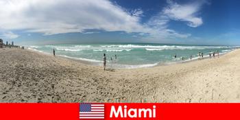 Thú vị, hông và cảm giác độc đáo du khách trẻ ở Miami ấm áp Hoa Kỳ
