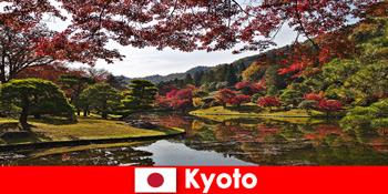 Chuyến đi nước ngoài đến Kyoto Nhật Bản để tô màu lá mùa thu nổi tiếng