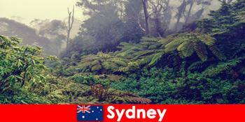 Khám phá Sydney Australia vào thế giới ấn tượng của các công viên quốc gia
