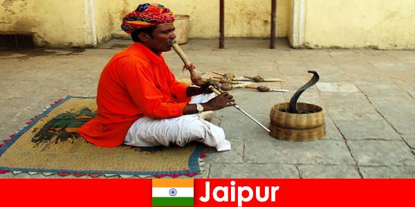 Ở Jaipur Ấn Độ, du khách trải nghiệm các điệu nhảy rắn và giải trí trên đường phố nhộn nhịp